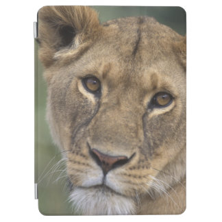Africa, Kenya, Masai Mara Game Reserve, 2 iPad Air Cover