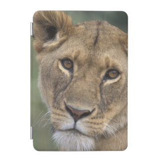 Africa, Kenya, Masai Mara Game Reserve, 2 iPad Mini Cover