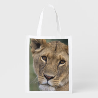 Africa, Kenya, Masai Mara Game Reserve, 2 Reusable Grocery Bag