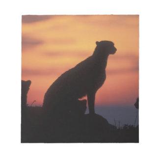 Africa, Kenya, Masai Mara Game Reserve, Adult 3 Notepad