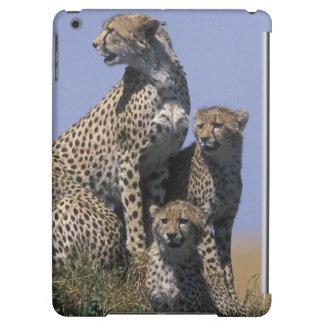 Africa, Kenya, Masai Mara Game Reserve, Adult 4 Cover For iPad Air