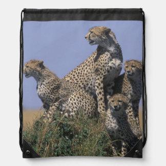 Africa, Kenya, Masai Mara Game Reserve, Adult 4 Drawstring Bag