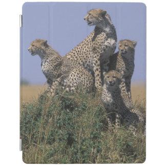 Africa, Kenya, Masai Mara Game Reserve, Adult 4 iPad Cover