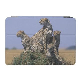 Africa, Kenya, Masai Mara Game Reserve, Adult 4 iPad Mini Cover