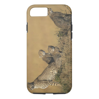 Africa, Kenya, Masai Mara Game Reserve, Adult 5 iPhone 8/7 Case