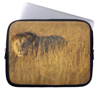 Africa, Kenya, Masai Mara Game Reserve, Adult Laptop Sleeve