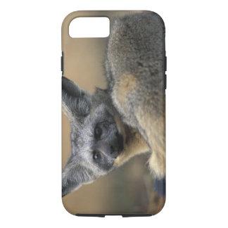 Africa, Kenya, Masai Mara Game Reserve, Bat iPhone 7 Case
