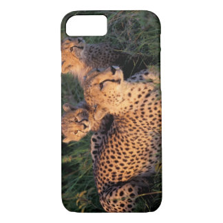 Africa, Kenya, Masai Mara Game Reserve. Cheetah 2 iPhone 8/7 Case