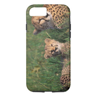 Africa, Kenya, Masai Mara Game Reserve. Cheetah iPhone 8/7 Case