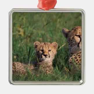 Africa, Kenya, Masai Mara Game Reserve. Cheetah Silver-Colored Square Decoration