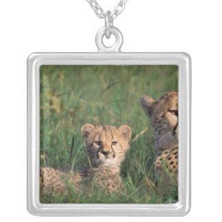 Africa, Kenya, Masai Mara Game Reserve. Cheetah Silver Plated Necklace