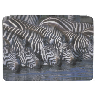 Africa, Kenya, Masai Mara Game Reserve, Plains iPad Air Cover