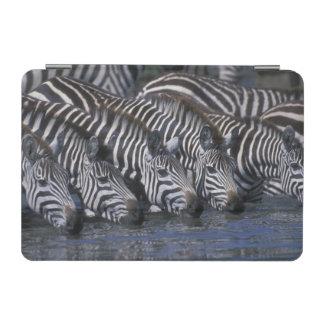 Africa, Kenya, Masai Mara Game Reserve, Plains iPad Mini Cover