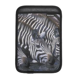 Africa, Kenya, Masai Mara Game Reserve, Plains iPad Mini Sleeve