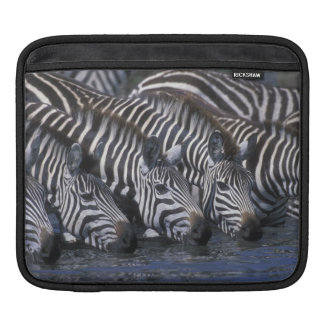 Africa, Kenya, Masai Mara Game Reserve, Plains iPad Sleeve