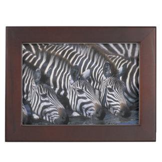 Africa, Kenya, Masai Mara Game Reserve, Plains Keepsake Box