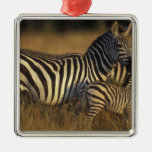 Africa, Kenya, Masai Mara Game Reserve. Plains Silver-Colored Square Decoration