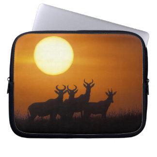 Africa, Kenya, Masai Mara Game Reserve, Topi Laptop Sleeve