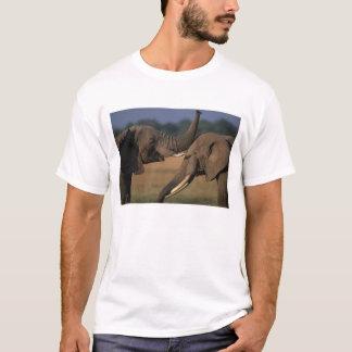 Africa, Kenya, Masai Mara Game Reserve, Two Bull T-Shirt