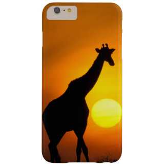 Africa, Kenya, Masai Mara. Giraffe (Giraffe Barely There iPhone 6 Plus Case