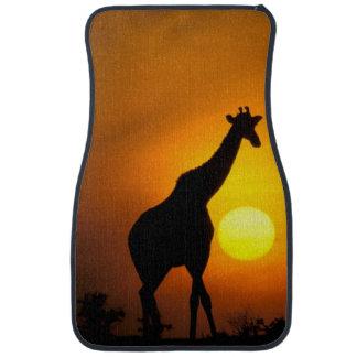 Africa, Kenya, Masai Mara. Giraffe (Giraffe Car Mat