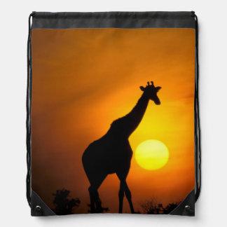Africa, Kenya, Masai Mara. Giraffe (Giraffe Drawstring Bag