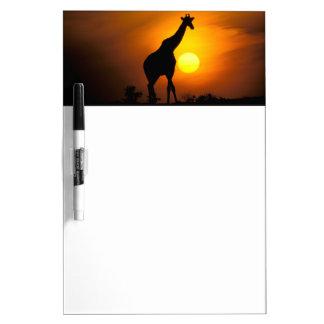 Africa, Kenya, Masai Mara. Giraffe (Giraffe Dry Erase White Board