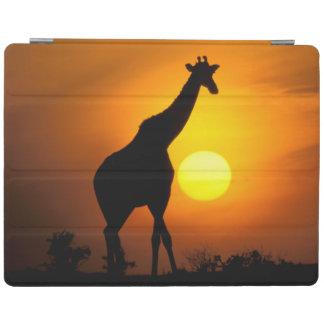 Africa, Kenya, Masai Mara. Giraffe (Giraffe iPad Cover