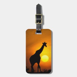 Africa, Kenya, Masai Mara. Giraffe (Giraffe Luggage Tag