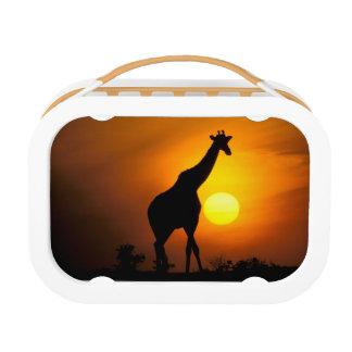 Africa, Kenya, Masai Mara. Giraffe (Giraffe Lunch Box