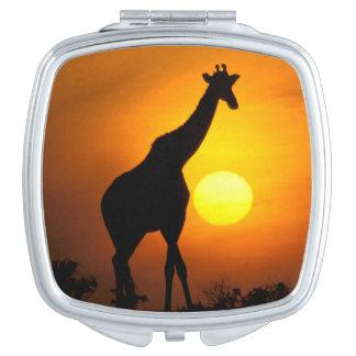 Africa, Kenya, Masai Mara. Giraffe (Giraffe Mirrors For Makeup