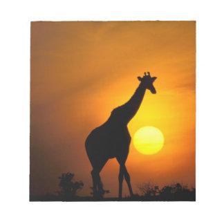 Africa, Kenya, Masai Mara. Giraffe (Giraffe Notepad