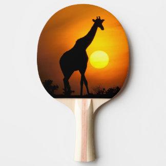 Africa, Kenya, Masai Mara. Giraffe (Giraffe Ping Pong Paddle