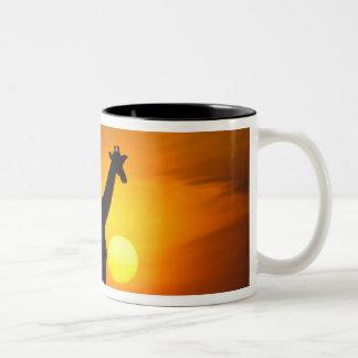 Africa, Kenya, Masai Mara. Giraffe (Giraffe Two-Tone Coffee Mug