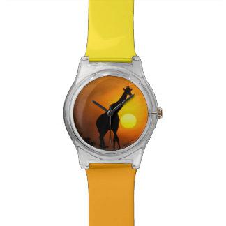 Africa, Kenya, Masai Mara. Giraffe (Giraffe Watch