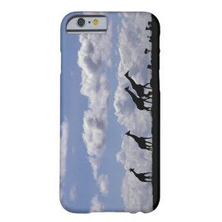 Africa,Kenya,Masai Mara. Giraffes (Giraffa Barely There iPhone 6 Case