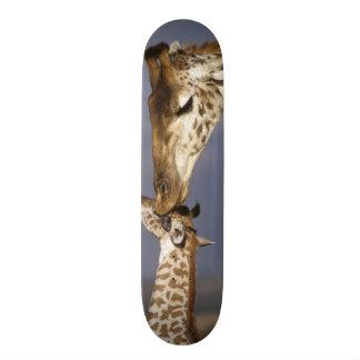 Africa, Kenya, Masai Mara. Giraffes (Giraffe 19.7 Cm Skateboard Deck