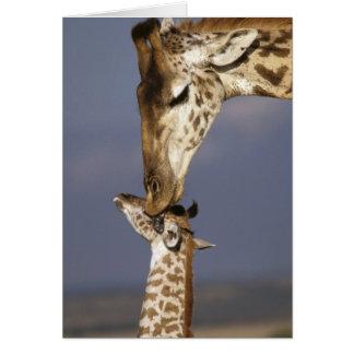 Africa, Kenya, Masai Mara. Giraffes (Giraffe Card