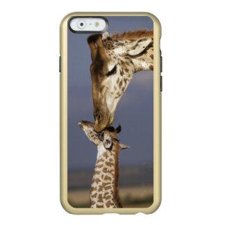 Africa, Kenya, Masai Mara. Giraffes (Giraffe Incipio Feather® Shine iPhone 6 Case