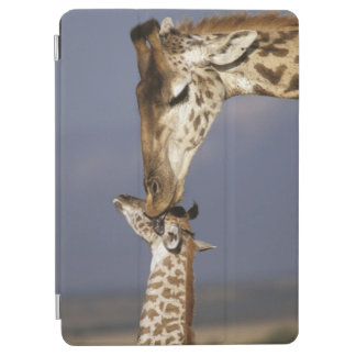 Africa, Kenya, Masai Mara. Giraffes (Giraffe iPad Air Cover