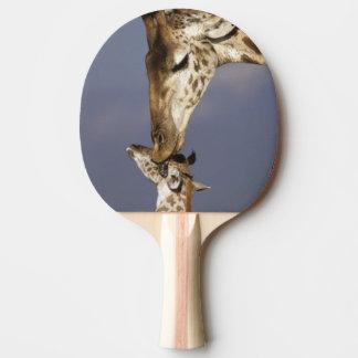 Africa, Kenya, Masai Mara. Giraffes (Giraffe Ping Pong Paddle