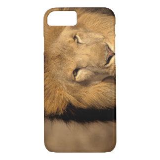 Africa, Kenya, Masai Mara. Lion male (Panthera iPhone 8/7 Case