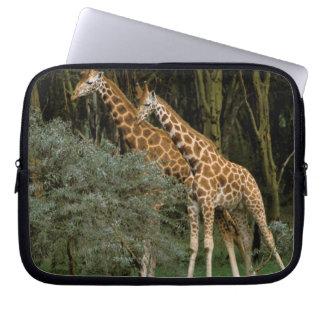Africa, Kenya, Masai Mara. Masai giraffe Laptop Sleeve