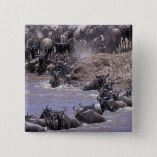 Africa, Kenya, Masai Mara National Park. 15 Cm Square Badge