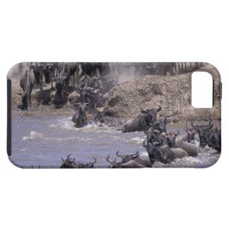 Africa, Kenya, Masai Mara National Park. iPhone 5 Covers