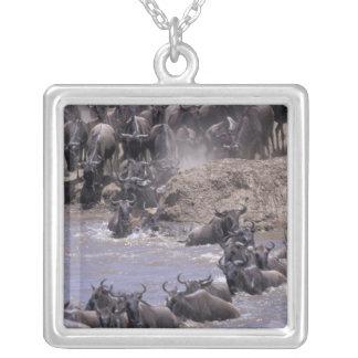 Africa, Kenya, Masai Mara National Park. Silver Plated Necklace