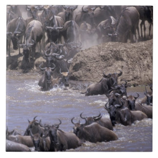 Africa, Kenya, Masai Mara National Park. Tile