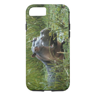 Africa, Kenya, Masai Mara NR. A mother hippo and iPhone 8/7 Case