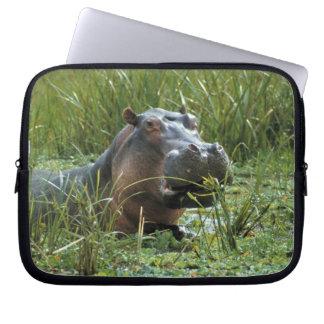 Africa, Kenya, Masai Mara NR. A mother hippo and Laptop Computer Sleeve