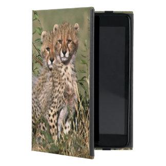 Africa; Kenya; Masai Mara; Three cheetah cubs Case For iPad Mini